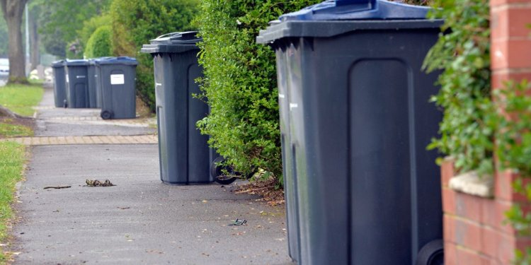 Weekly bin collections and rewards for recycling considered for
