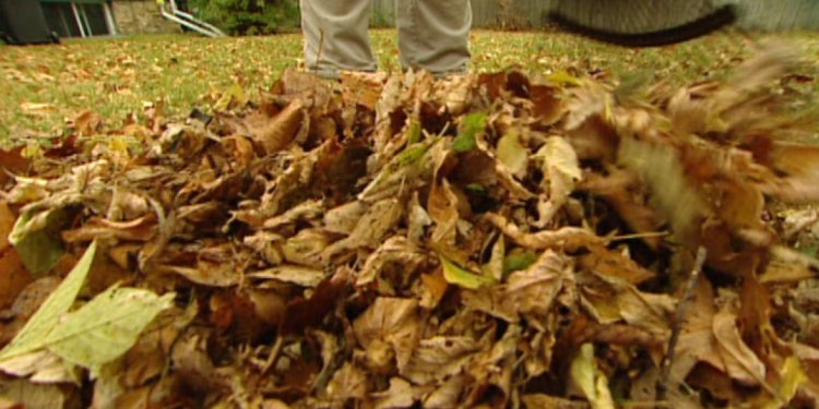 Yard Waste - Overview - Garbage & Recycling | City of Toronto